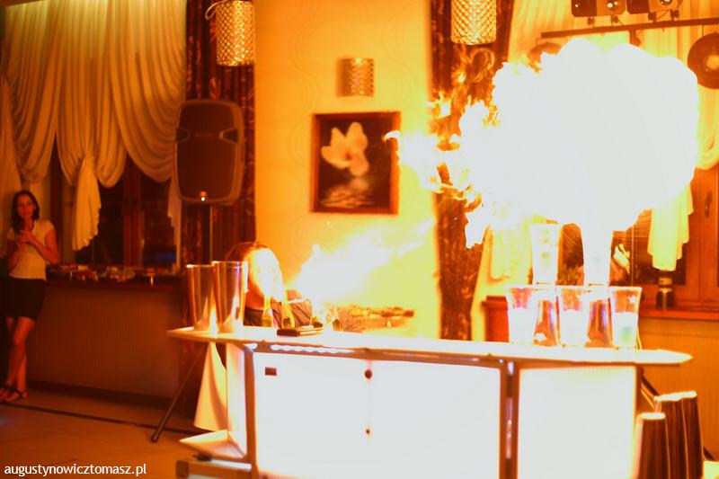 augustynowicz-pokaz-barmanski-08